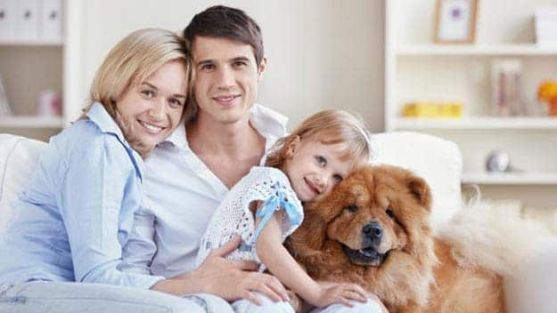 Wills & Trusts dog-young-family Direct Wills Barking